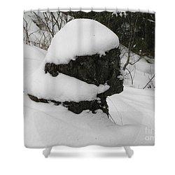 Snowy Profile Shower Curtain by Leone Lund