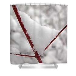 Shower Curtain featuring the photograph Snowy Red Twig by Mary Bedy