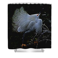 Wild Light 1 Shower Curtain by William Horden