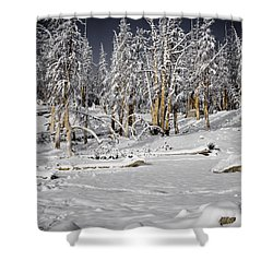 Snowy Silence Shower Curtain by Chris Brannen