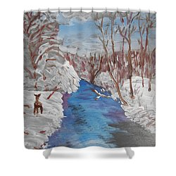 Snowy Stream Shower Curtain