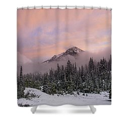 Snowy Surprise Shower Curtain