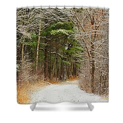 Snowy Tunnel Of Trees Shower Curtain