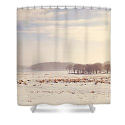 Snowy Valley Shower Curtain by Lyn Randle