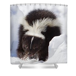 Snowy Walk Shower Curtain