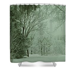 Snowy Winter Frost Shower Curtain
