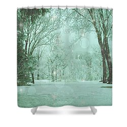 Snowy Winter Night Shower Curtain by Mary Wolf