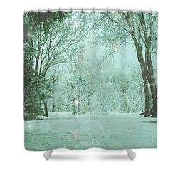 Snowy Winter Night Shower Curtain
