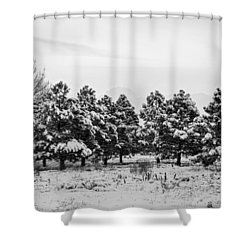 snowy winter pine trees in black and white shower curtain by james bo insogna