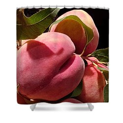 Shower Curtain featuring the photograph So Soft And Juice by Caryl J Bohn