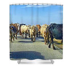 So This Is What Farm To Market Road Means - Panoramic Shower Curtain by Gary Holmes