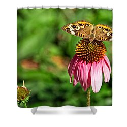 Shower Curtain featuring the photograph Soaking Up The Sun by Dave Files