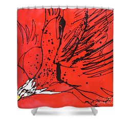 Shower Curtain featuring the painting Soar by Nicole Gaitan