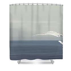Soaring Free Shower Curtain by Lisa Knechtel