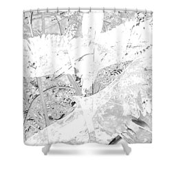 Soaring Hawks Indian Spirit White Gold Shower Curtain