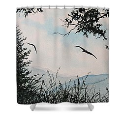 Soaring High Sold Shower Curtain