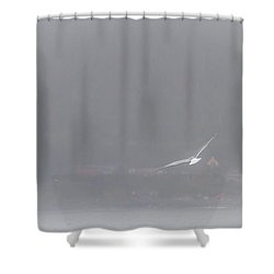 Soaring Home Shower Curtain