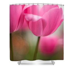 Soaring Pink Tulips Shower Curtain by Mike Reid