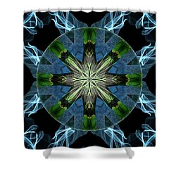 Soaring Spirit Shower Curtain