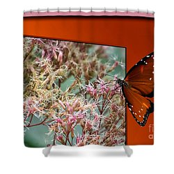 Social Butterfly 03 Shower Curtain by Thomas Woolworth
