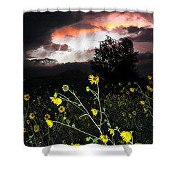 Socorro Sunset Shower Curtain by Steven Ralser