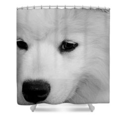 Soft And Overwhelming Beauty.... Shower Curtain