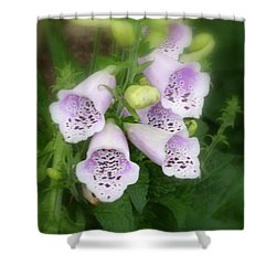 Soft And Silky Laced Gloves Shower Curtain by Lingfai Leung