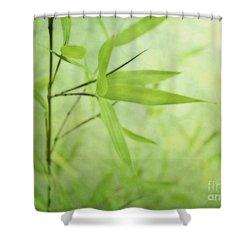 Soft Bamboo Shower Curtain by Priska Wettstein