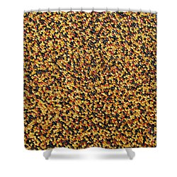 Soft Black With Brown Shower Curtain by Dean  Triolo