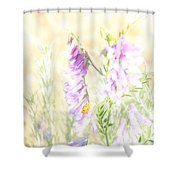 Soft Desert Flower Shower Curtain