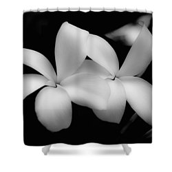Soft Floral Beauty Shower Curtain by Ron White
