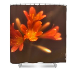 Soft Focus Kaffir Lily Shower Curtain