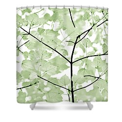 Soft Forest Green Leaves Melody Shower Curtain by Jennie Marie Schell