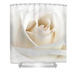 Soft Ivory Rose Flower Shower Curtain by Jennie Marie Schell