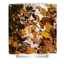 Shower Curtain featuring the photograph Soft Landing by Photographic Arts And Design Studio