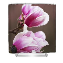 Soft Magnolia Blossoms Shower Curtain