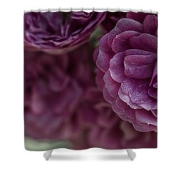 Shower Curtain featuring the photograph Soft Melody by Julie Andel