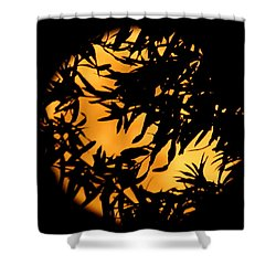 Soft Moon Silhouette Shower Curtain