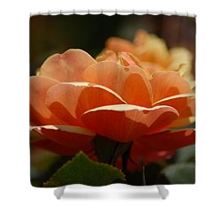 Soft Orange Flower Shower Curtain by Matt Harang