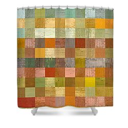 Soft Palette Rustic Wood Series Collage L Shower Curtain by Michelle Calkins