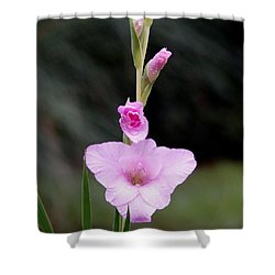 Soft Pink Glad Shower Curtain