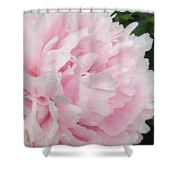 Shower Curtain featuring the digital art Soft Pink Peony by Jeannie Rhode