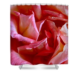 Shower Curtain featuring the photograph Soft Pink Petals Of A Rose by Janice Rae Pariza