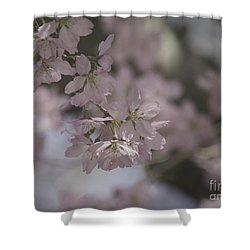 Soft Pink Texture Shower Curtain