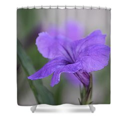 Shower Curtain featuring the photograph Soft Purple Floral by Penny Meyers