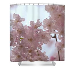 Shower Curtain featuring the photograph Soft... by Rachel Mirror