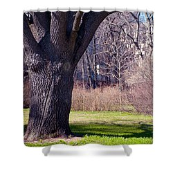 Soft Rosy Spring In The Garden Shower Curtain by Jenny Rainbow
