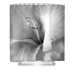 Soft Silver Gladiola Floral Shower Curtain by Jennie Marie Schell