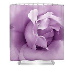 Soft Violet Rose Flower Shower Curtain by Jennie Marie Schell