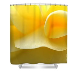 Soft Yellow Shower Curtain